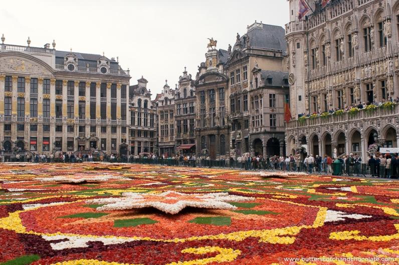 Brussels Flower Carpet 2006