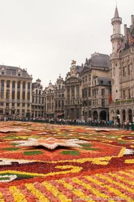 The biennial Brussels Flower Carpet